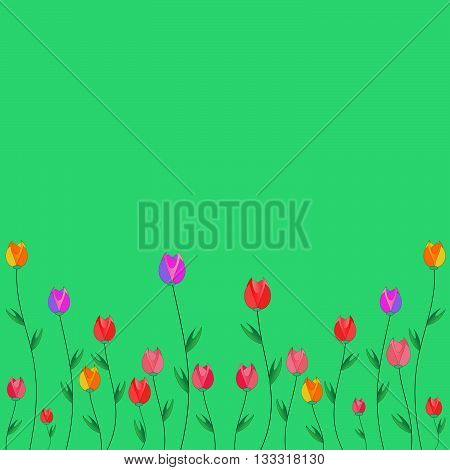 Tulips. Red pink yellow purple tulips on a green background.
