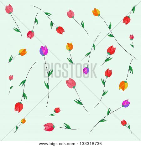 Pattern of tulips. Tulips scattered on the web