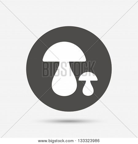 Mushroom sign icon. Boletus mushroom symbol. Gray circle button with icon. Vector