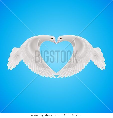 Two white doves makes form of the heart in sky