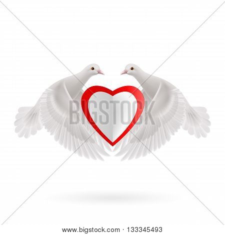 Two white doves holds white-red heart in wings