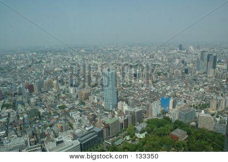Tokyo Town View