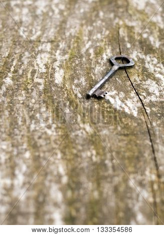 An vintage skeleton key on an grungy old dark rustic wood background.