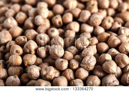 Many ripe peas chickpeas background, the main ingredient of hummus and other dishes. Top view