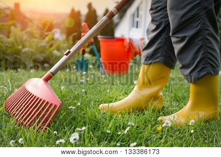 Woman Working In Garden With Rake