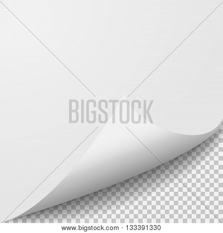 Curl corner paper template. Transparent grid. Empty isolated background page.
