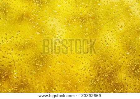 Rainy wet yellow gold abstract fall autumn abstract eco seasonal natural blurred background with water drops