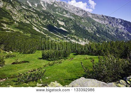 Amazing view of Green hills in Pirin Mountain, Bulgaria