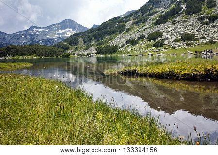 Amazing view of green meadows around Muratovo lake, Pirin Mountain, Bulgaria
