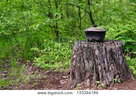 Old touristic pot is standing on old stump in green summer forest