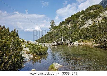wooden bridge over river in Pirin Mountain, Bulgaria