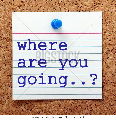 The words Where Are You Going on a note card pinned to a cork notice board as a reminder to have a plan for your business or life goals