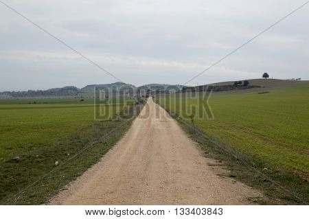Following a path in Soria, Castilla leon, Spain