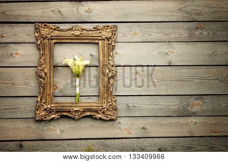 Calas in golden frame on wooden wall