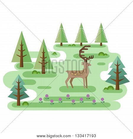 Red Deer in forest. Wildlife scene. Horned animal and trees. Idyllic flat style landscape. Small location useful for infographic, map or game. Vector illustration.