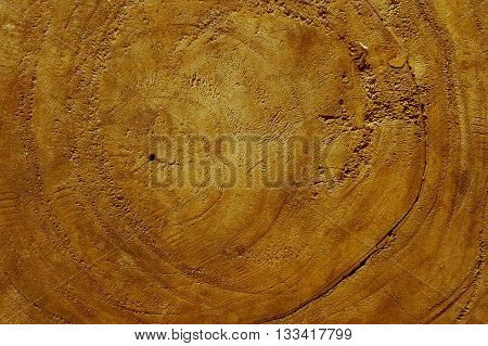 Brown wood surfaces Suitable for background or other surfaces.