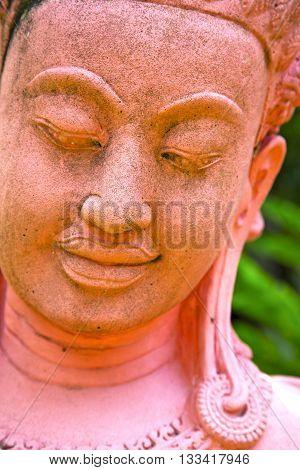 Siddharta     The Pink       Step     Wat  Palaces