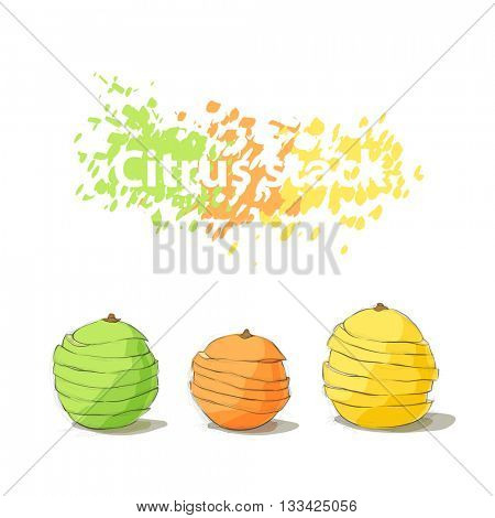 Stack of citrus sliced fruits on white background