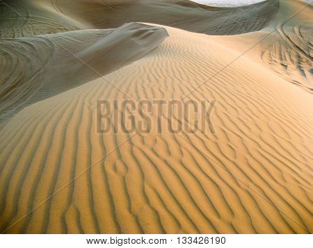 Large yellow desert sand dunes to the wheel tracks in the last rays of the sun.