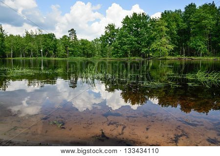 Clouds and trees reflecting in the river. summer