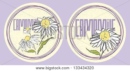 Round stickers set of hand drawn camomiles in pastel colors for organic design of healthy products like shampoo cream or herbal tea.