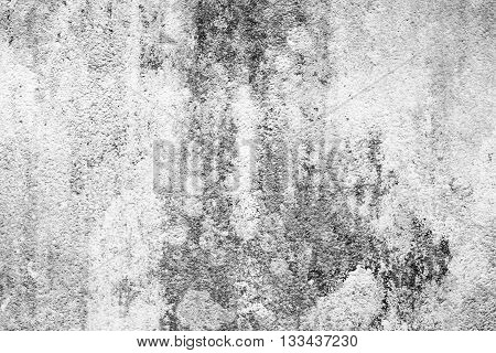 Hi res white concrete wall texture and background. White wall background for any design. Black and white