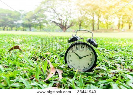 Black Alarm Clock In The Park