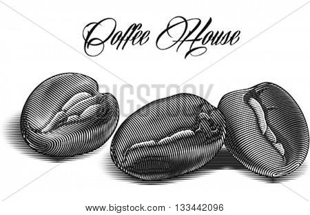 Roasted coffee beans engraved on the white background. Editable vector illustration.
