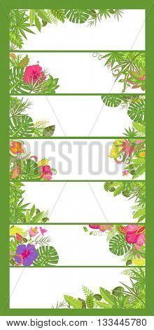 Summery floral horizontal banners with tropical flowers