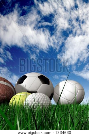 Sports Balls On The Grass