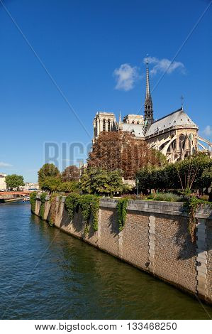 Notre Dame from Square du Jean XXIII Paris. Wide shot with river on the side. Vertical view.