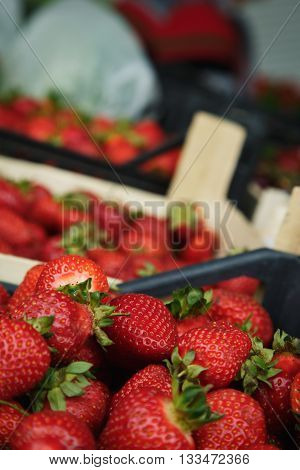 ripe juicy strawberries sitting in the box on the market