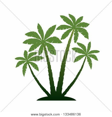 Vector Illustration of Palm Trees. Green Graphic elements.