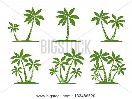 Vector Illustration of Palm Trees. Green Design Elements.