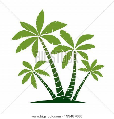 Green Palm Trees. Vector Illustration and Graphic Elements.