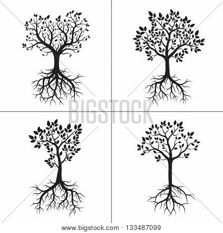 Set of black Spring Trees with Leafs and Roots. Vector Illustration.