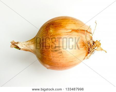 Onions isolated.