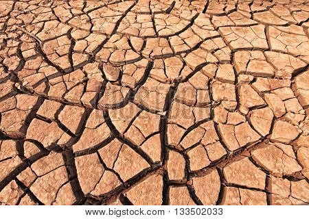 The cracked ground. dry soil. Cracked soil background