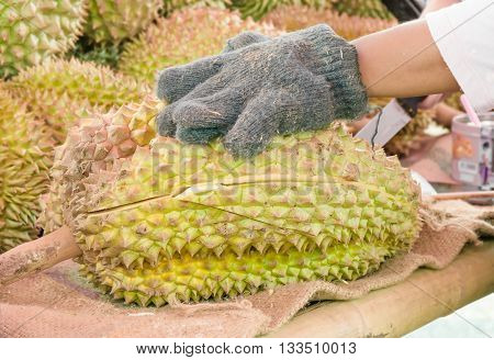 Traders in the market, Peeling durian .