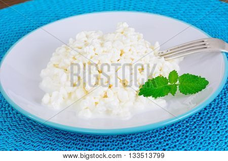 Home Dietary Fat Cottage Cheese Beaded Curd Studio Photo