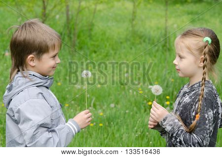 Boy And Girl Standing In Field Showing Dandelions