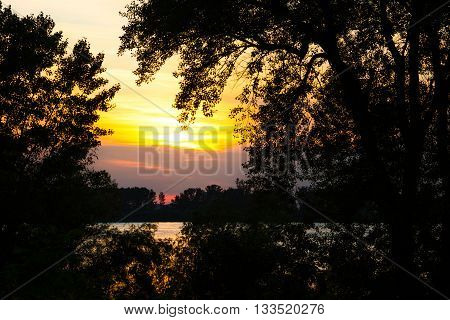 Tranquil colorful orange sunset over the Danube River viewed through silhouetted trees and foliage