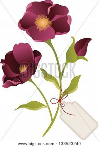 Scalable vectorial image representing a flower with label tag, isolated on white.