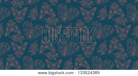 Seamless hand drawn color pattern of inky moth and butterfly.Geometric and ornate butterflies texture.Abstract lined pattern for design label decortextile