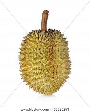 whole ripe Durian with stem on white background