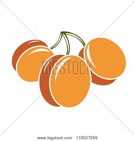 Vegetarian organic food simple illustration three vector ripe sweet orange apricots isolated on white.