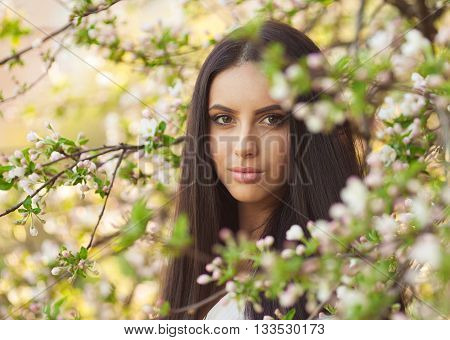 The woman and a tree with flowers, spring awakening