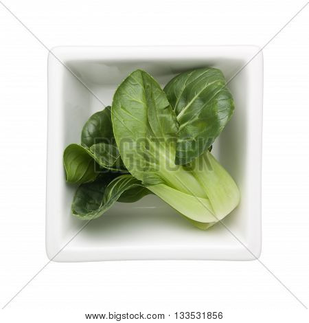 Chinese cabbage in a square bowl isolated on white background