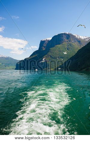 Beautiful Fjords Near The Flam In Norway
