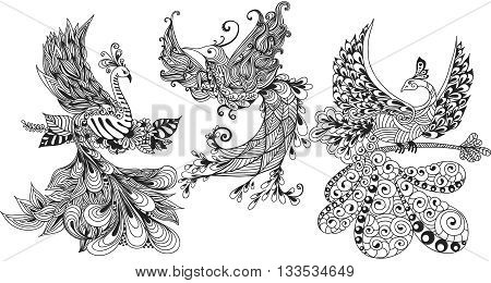 Illustration of three Phoenix Birds. Black and white illustration.